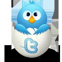 djolbis in twitter